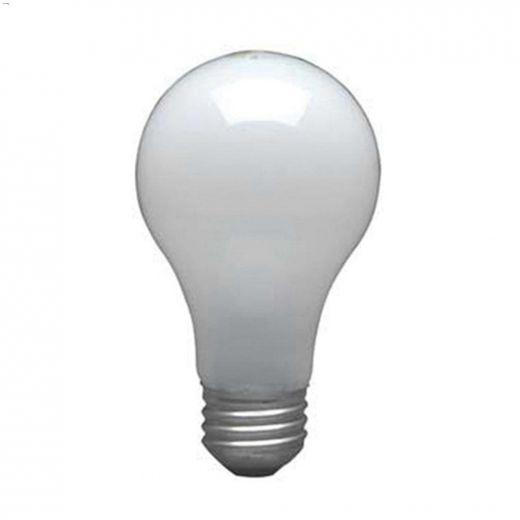 Safeline 60 Watt E26 Medium A19 Incandescent Bulb