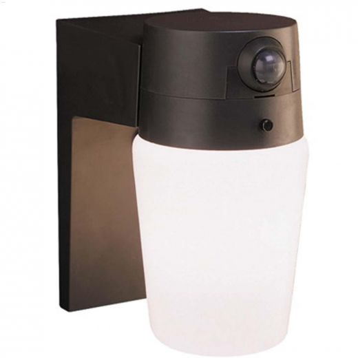 110 Degree Motion-Activated Security Light