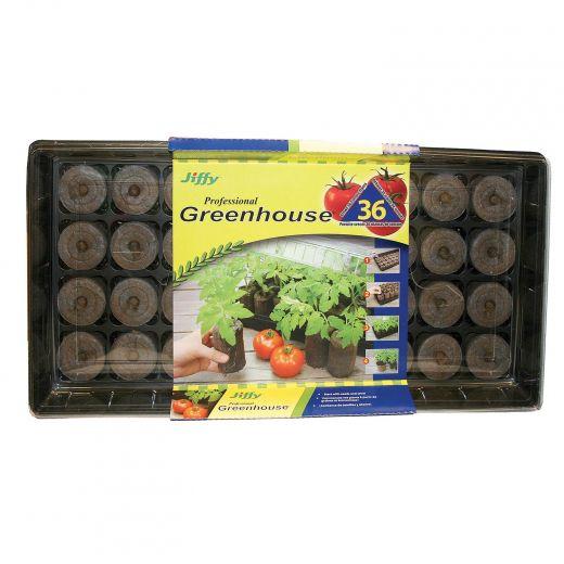 Jiffy Tomato Greenhouse 36