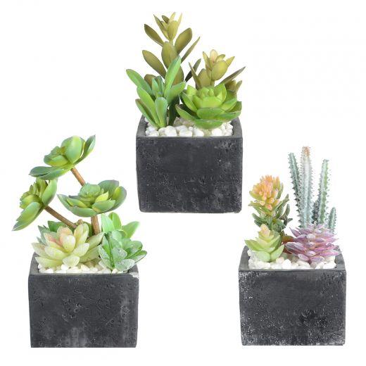 "3.5"" Artificial Succulents In Black Square Ceramic Pot"