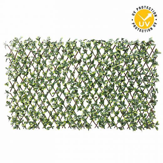 Gardenia Privacy Lattice 94 x 200cm