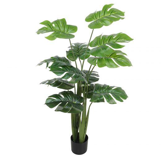 "48"" Monstera Plant"