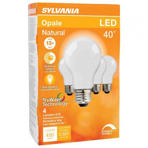 5.5 Watt Dimmable Medium Base LED A19 Bulb-4/Pack
