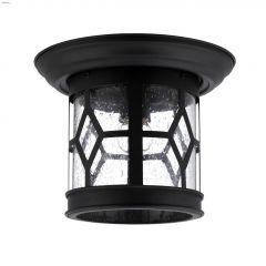 "Atlanta 10"" Flushmount Outdoor Light-Black"