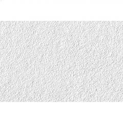 "Astro ClimaPlus 8221 Acoustical Panel 2' x 2' x 5/8""-16/Box"