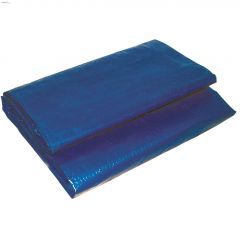 8' x 10' Blue Economy Tarp