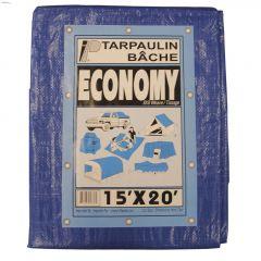 20' x 30' Blue Economy Tarp