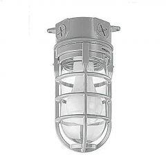 150 Watt Outdoor Metal Cage Light