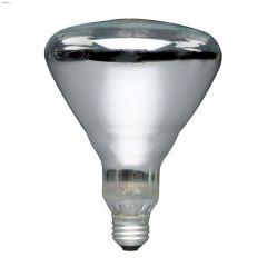 250 Watt E26 Medium BR40 Incandescent Bulb