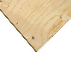 "3/4"" x 2' x 4' Cut Spruce Select Plywood"