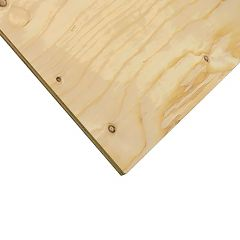 "3/4"" x 4' x 4' Cut Spruce Select Plywood"