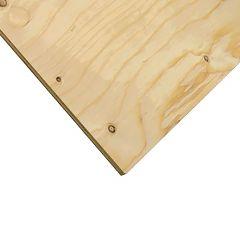 "5/8"" x 2' x 4' Cut Spruce Select Plywood"