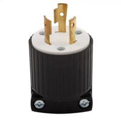 Black/White Locking Plug 20A 250V 2P/3W