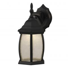 Elgin 1 Light Outdoor Lantern