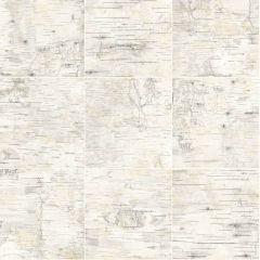 Prepasted Wallpaper Champlain Grey