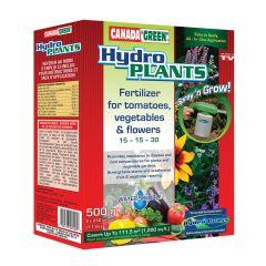 Hydro Grass Plants