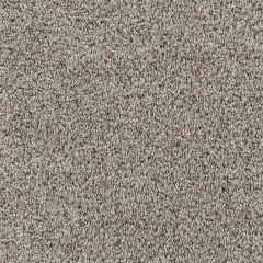 Bayside Nougat Delight Carpet