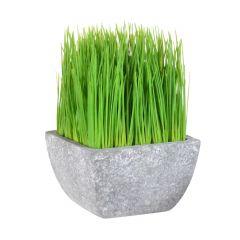 """6"""" Artificial Succulent In Terracotta Pot"""