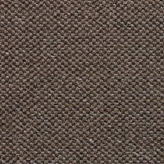 Chex II Carpet