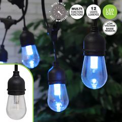 12 Light Multi Function String Lights