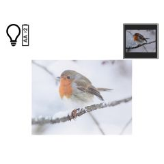 "16"" x 12"" Winter Robin LED Canvas"