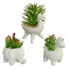 Animal Shaped Pot With Plant-3 Assorted