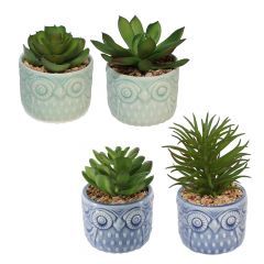 Owl Pot with Plant-4 Assorted