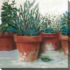 """24"""" x 24"""" Pots Of Herbs I Canvas"""