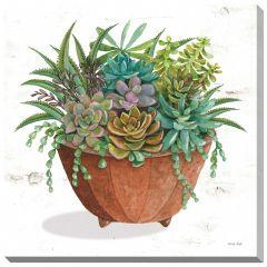 """24"""" x 24"""" Terracotta Succulents I Canvas"""