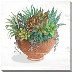 "24"" x 24"" Terracotta Succulents II Canvas"