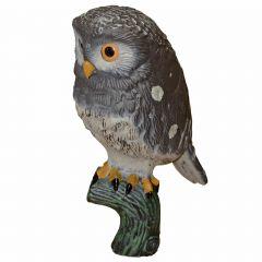 "10"" Baby Owl"