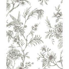 Jessamine Grey Floral Trail Wallpaper