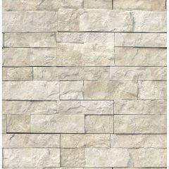 Landmark Peel & Stick Wallpaper
