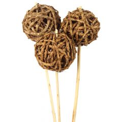 Root Ball Assorted Stems