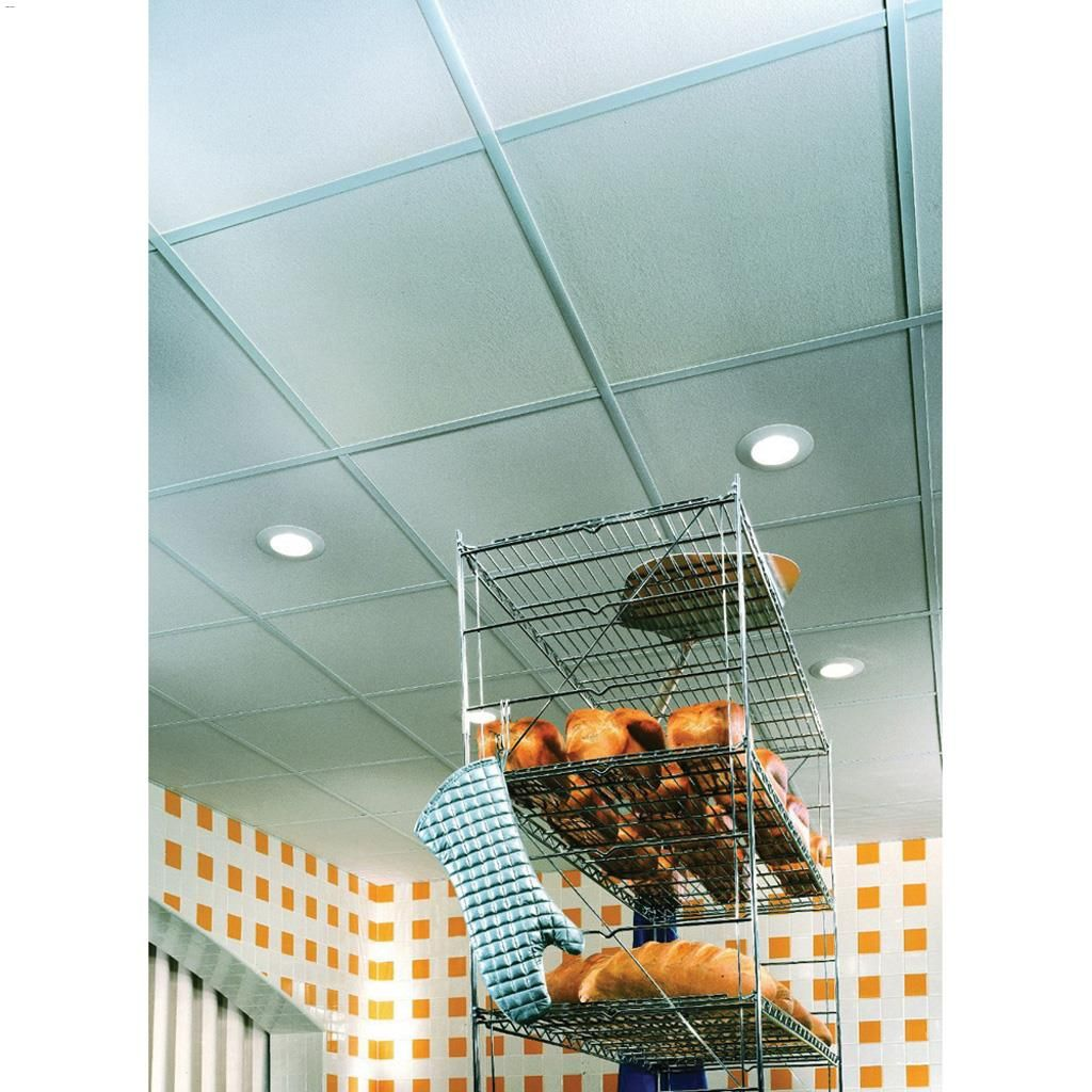 Kent Cgc Sheetrock Climaplus Lay In Ceiling Panel 2 X 4 X