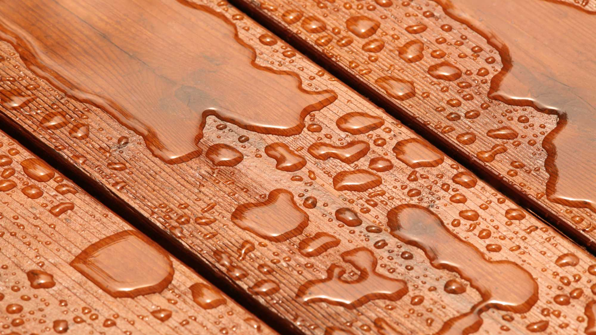closeup of water droplets on a deck