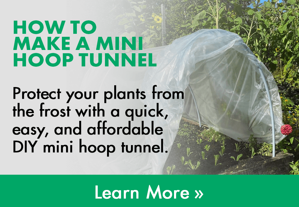 how to make a mini hoop tunnel